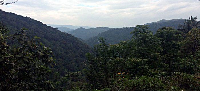 Die Kardamom-Berge in Südindien (Foto: ruti)