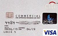 Das ist die Abbildung von Lucies Kreditkarte auf meinem Online-Ticket. (Quelle: Skypicker)