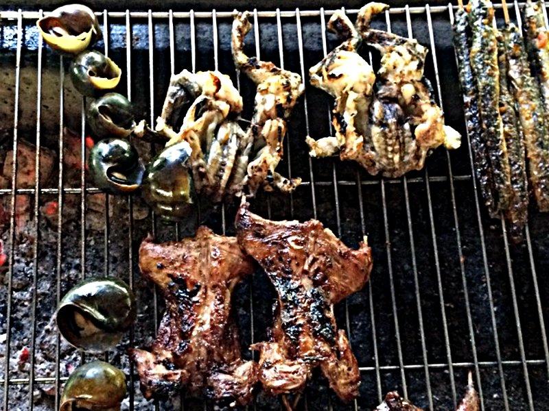 Im Mekong-Delta in Vietnam gibts Ratte vom Grill zu essen. Sieht gewöhnungsbedürftig aus, schmeckt aber dank einer Honigmarinade ziemlich gut. (Foto: Ruti)