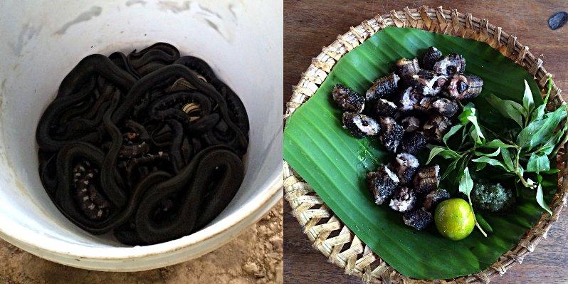 Schlange, Ratte, Hühnerfüße - Essen und Trinken in Vietnam