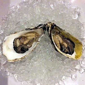 In Vietnam werden viele leckere Austern gezüchtet. (Foto: Ruti)