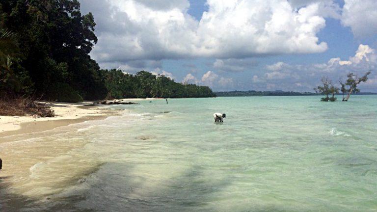 Beach Nr. 5 auf Havelock bei Flut. (Foto: Ruti)
