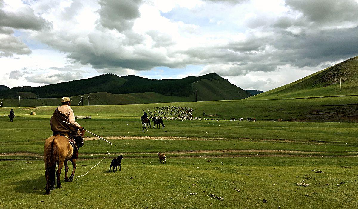 Mongolei – zur Wüste Gobi und zurück Teil 4