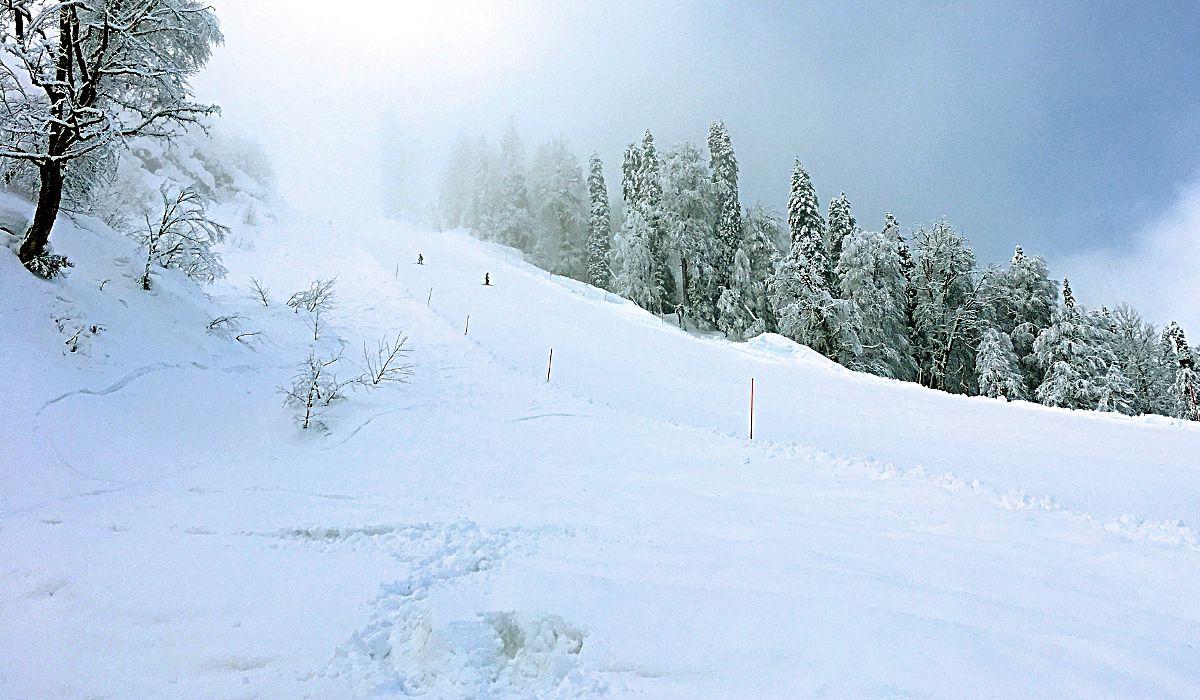 So schön viel Schnee lag in Sotschi (Foto: Ruti)