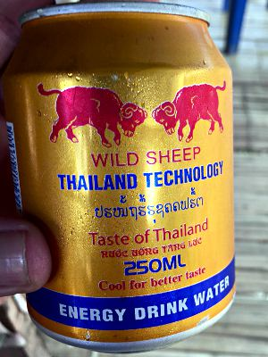 Wild Sheep, Energy Drink, Laos 2016 (Foto: ruti)