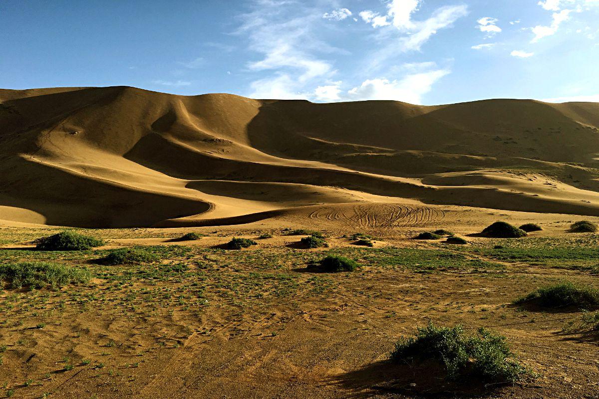 Das ist die mongolische Sanddüne, die wir erklommen haben. (Foto: ruti)