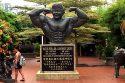 Datuk Wira Dr. Gan Boon Leong, der Vater des malaysischen Bodybuildings lässt in Malakka die Muskeln spielen. (Foto: Ruti)