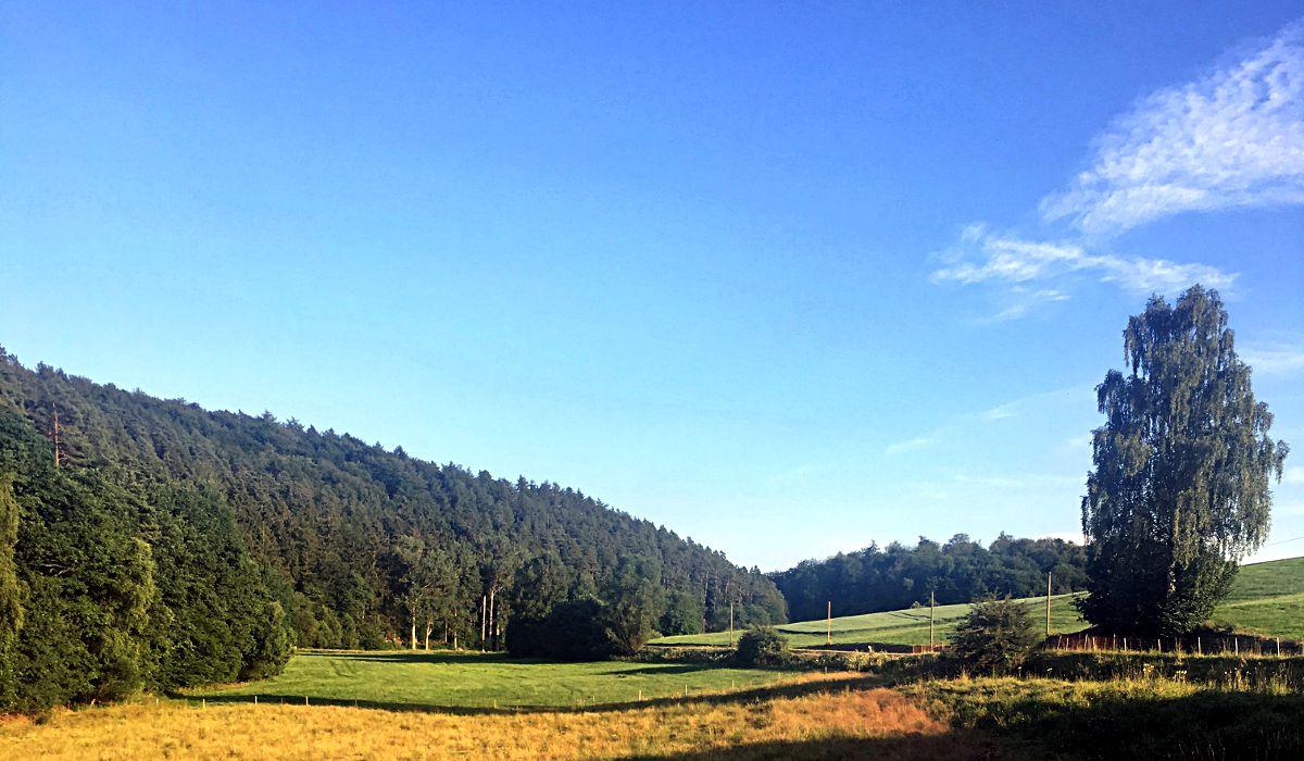 Deutschland - hier Nordhessen - ist doch auch ganz schön. (Foto: Ruti)