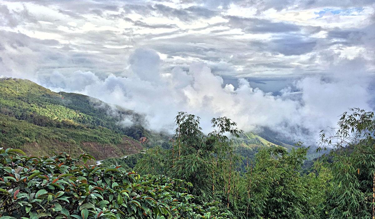 Mit meinem Moped kletterte ich in Laos bis über die Wolken. (Foto: Ruti)