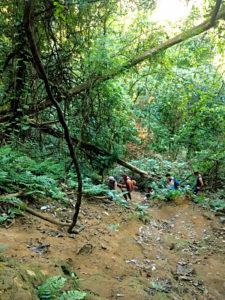 Hier musst Du Dich hoch- bzw. runterquälen, um vom oberen zum untern Teil der Kuang Si Wasserfälle zu gelangen. (Foto: Ruti)