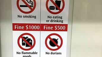 Verbotsschilder in Singapur (Foto: Ruti)