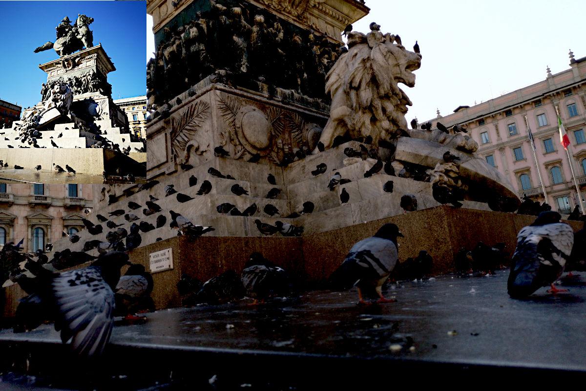 Die Reiterstatue zeigt König Vittorio Emanuele II. Sie ist bei Menschen und Tauben gleichermaßen als Ausruh-Ort beliebt. (Foto: Ruti)