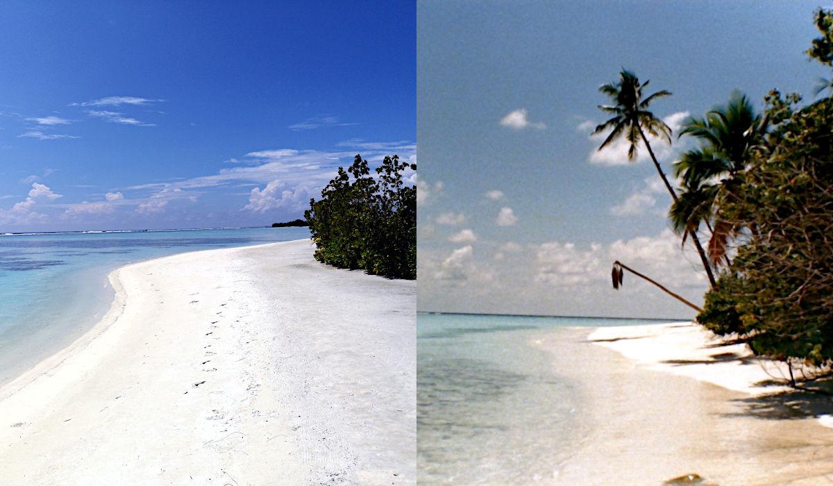 Der Vergleich zwischen 1988 und 2018. Auch wenn es nicht die selbe Strandecke ist, kann man den Unterschied des menschlichen Eingriffs gut erkennen. (Foto: Ruti)