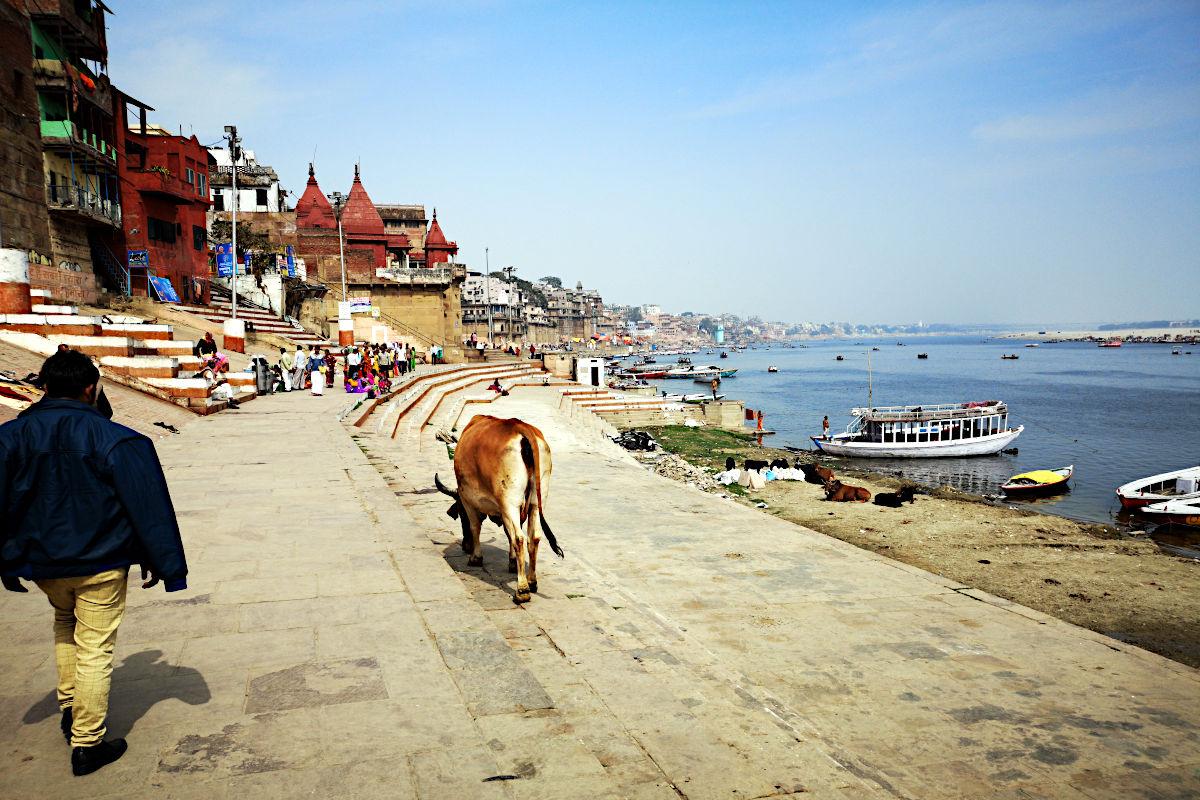 Willkommen in Varanasi - der heiligsten aller Städte am Ganges. (Foto: Ruti)