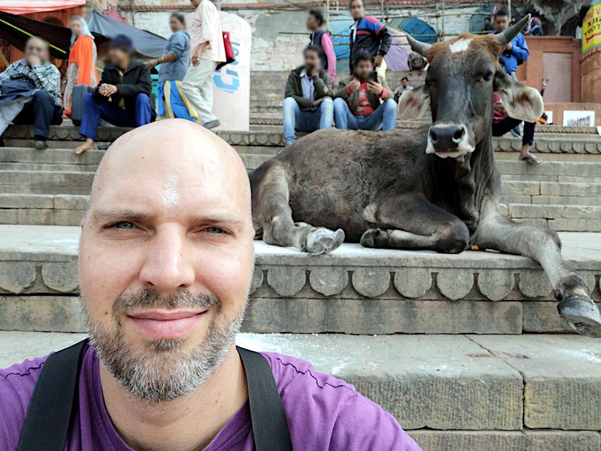 Selfie mit Kuh - beim genauen Hinsehen kann man die Asche des Sadhus auf meiner Stirn erkennen. (Foto: Ruti)