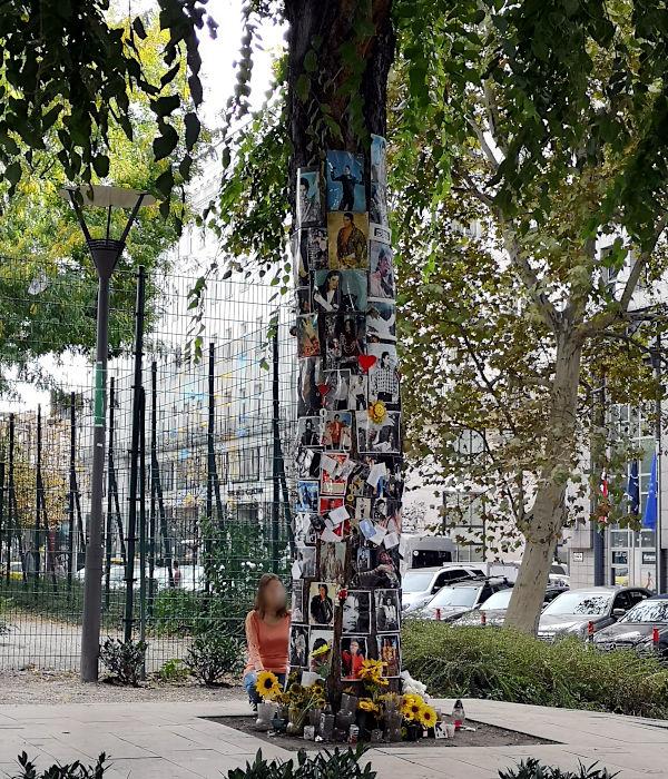 Dort, wo einst die Fans darauf warteten, dass sich Michael Jackson zeigte, erinnert heute noch dieser Baum. (Foto: Ruti)