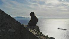 Der Affenfelsen von Gibraltar und im Hintergrund Afrika (Foto: Ruti)